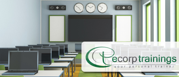 Workday HCM Online Training & Project Support Provided by Ecorp Trainings,  Workday HCM Job Training by Ecorp Trainings